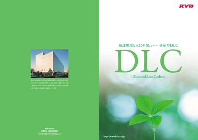 DLC-1.jpg