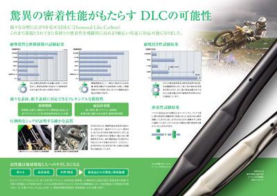 DLC-2.jpg